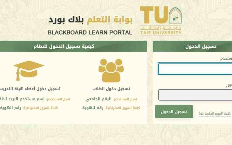 جامعة الطائف بلاك بورد 1442 رابط تسجيل الدخول